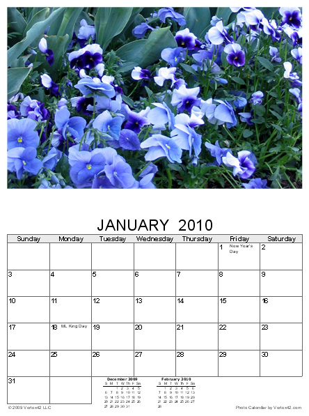 daily calendar template 2011. Photo Calendar Template